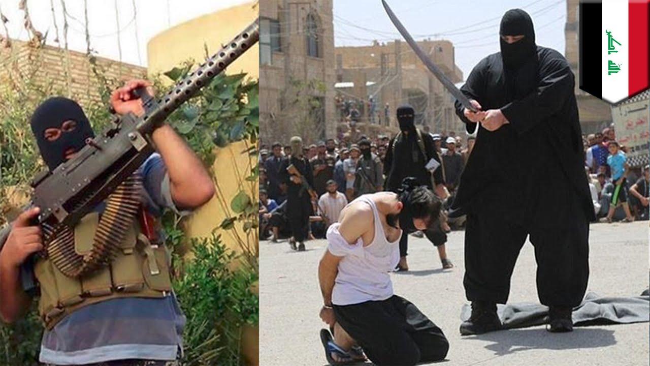 Isis Quot Buldożej Z Fallujah Quot Człowiek Maszyna Do