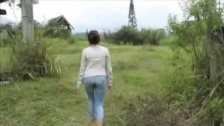 Download Video mesum di hutan sama cewek cantik MP3 3GP MP4