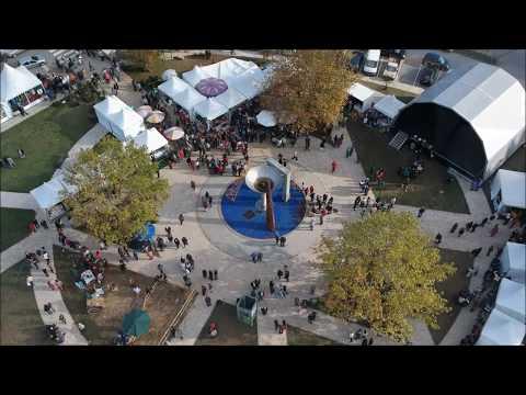 Feira da Castanha de S. Pedro de Castelões - 2017