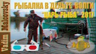 "3D stereo red cyan Рыбалка в дельте Волги  База ""Царь-рыба"" 2017. Мальковский Вадим"