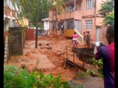 Sierra Leone mudslide kills more than 200 as houses are buried