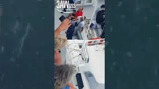 Exclusive: Cruise ship troublemakers removed by NSW police thumbnail