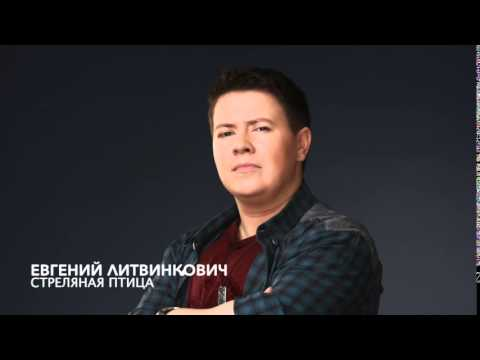Евгений Литвинкович - Стреляная Птица (Минус)