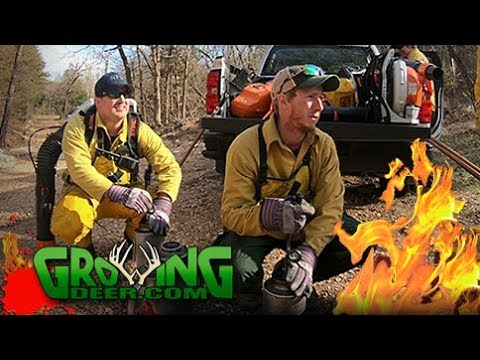 Fired Up | Tips to Improve Whitetail Habitat (#434) @GrowingDeer.tv