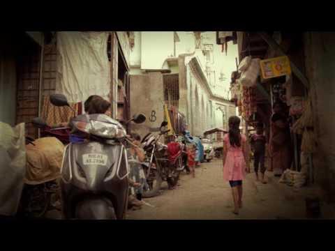 The Land I Was Born On by Niraj Chag