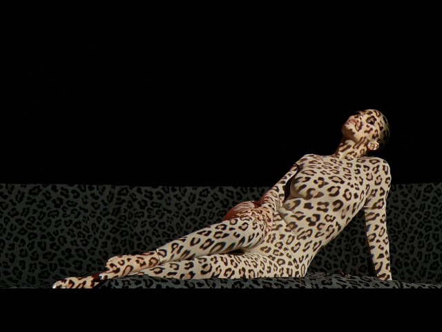 Behind the Scenes of My Leopard Collection Video Shoot