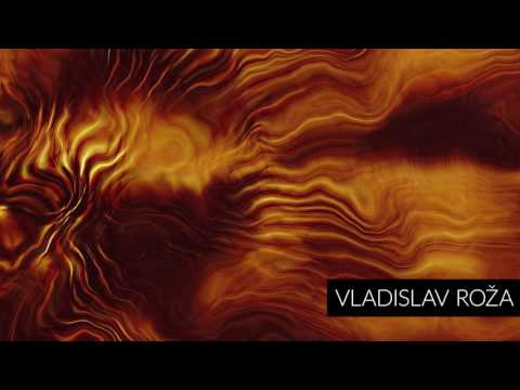Zeljko Bebek - Kucka Nevjerna (Roža Remix)