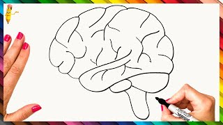 How To Draw Tнe Human Brain Step By Step 🧠 Brain Drawing Easy