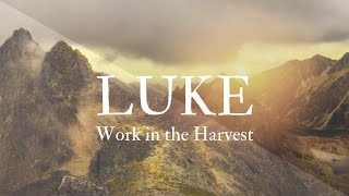 Work in the Harvest