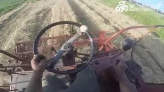 Rolnik z GoPro na głowie #3 ☆ Żniwa 2016 ☆ BIZON Z056 ㋡ AgroMafiaMietel