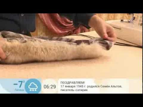 Как сшить жилет из лисы. Часть 7 - YouTube
