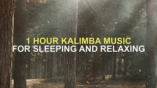 1 HOUR KALIMBA MUSIC FOR SLEEPING AND RELAXING  - Take Me To Church