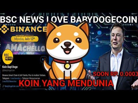 Binance Mulai Lirik Baby Doge Coin Potensi 1000x Lipat ⁉️
