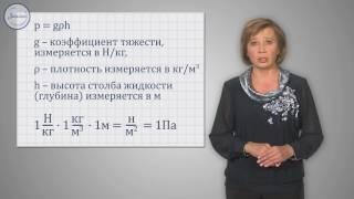 Физика 7 класс. Давление в жидкости и газе