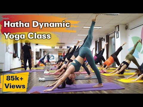 Hatha Dynamic Flow Yoga Class For Beginner | Raja Gupta