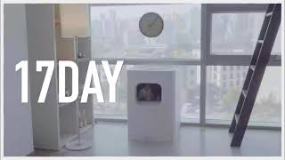 Best Self-Cleaning Cat Litter Box - La Vie with LavvieBot