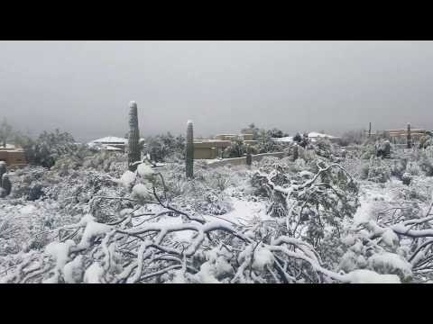Snow in Scottsdale Arizona February 22, 2019