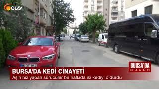 Bursa'da Bugün - 18-06-2018