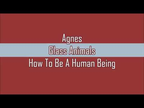 Glass Animals - Agnes (Lyrics)