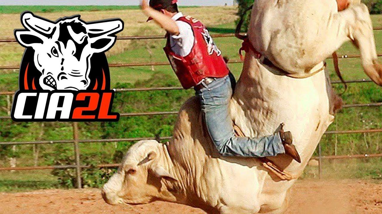 Treino de Agosto 2017 ║ Cia de Rodeio 2 L Bulls 🐂 - YouTube 4e9c30e4884
