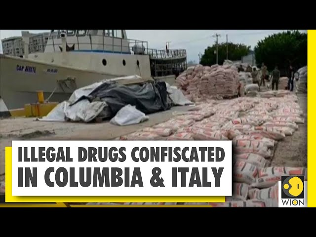 Drug cartels thrive during COVID-19 pandemic   World News