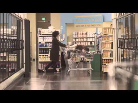 YEVO International Health Food Business Opportunity
