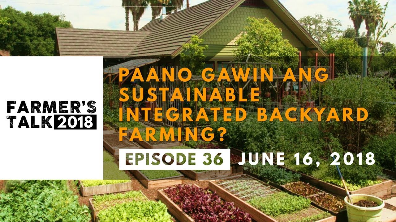 Sustainable Farmer Farmer S Talk Paano Gawin Ang Sustainable Integrated Backyard Farming
