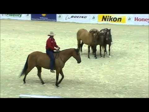 Guy McLean horsemanship part 2