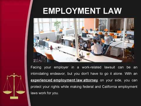 When you should Hire an Employment Law Attorney