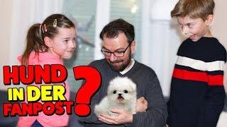 Zuschauer schickt uns einen HUND per POST 😱 ?! Lulu & Leon - Family and Fun