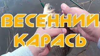Весенняя рыбалка когда рыба клюет карась прет(Весенняя рыбалка когда рыба клюет карась прет Выехал закинуть удочку в свой день рождения, да озеро сделало..., 2015-05-09T03:15:58.000Z)