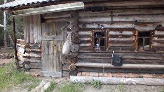 Старая лесная изба на Няфте.