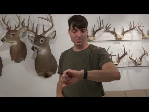 Whitetail Hunting Strategies LIVE - Deer calling - Best practices