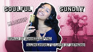 Sugar x Dangerously In Love Mashup (cover)/ Soulful Sunday #2