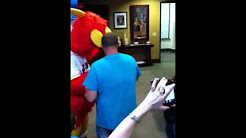 Barnstormers mascot kidding around