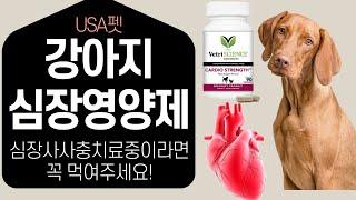 강아지 심장사상충 영양제 반려동물 심장 영양제