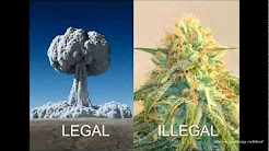 Why are some drugs illegal, and why should YOU care?