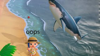 Best Animal Crossing New Horizons Clips #72