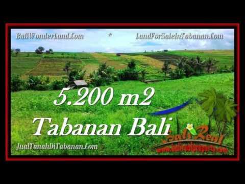 Affordable TABANAN BALI LAND FOR SALE TJTB281