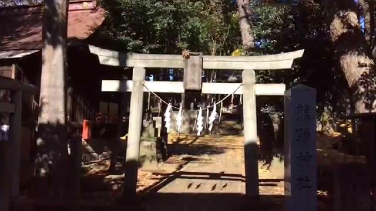 堀ノ内熊野神社---東京都杉並区 ...