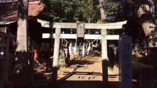 堀ノ内熊野神社---東京都杉並区