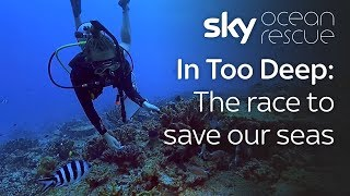 In Too Deep: The race to save our seas thumbnail