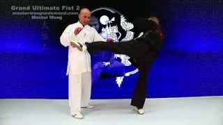 tai chi push hands tai chi chuan fight style use tai chi - Lesson 5