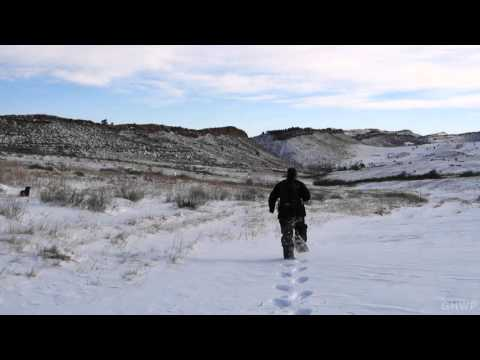 Snowshoeing In Lory State Park - In A Colorado Minute (Week 294)