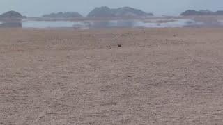 Мираж в пустыне Сахара