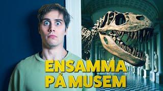 KURRAGÖMMA PÅ ETT MUSEUM
