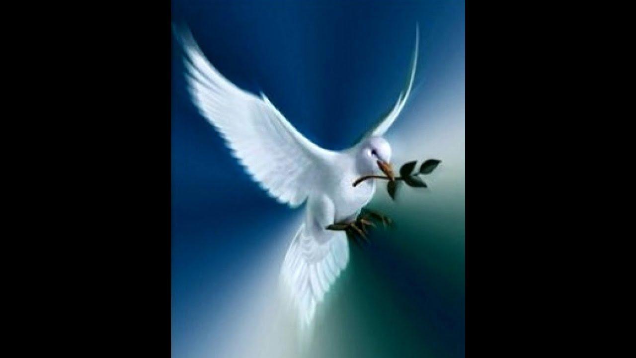 Пісня Мир Вам Люди