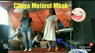 DANGDUT CD NYA SAMPE MELOROT