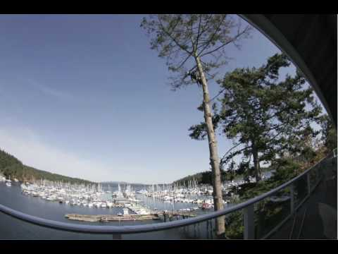 Island Skyline Tree Care at the Port of Friday Harbor