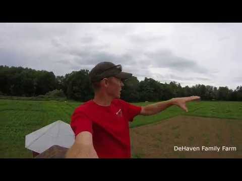 How to cut out a CORN MAZE!!